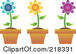 218331-Royalty-Free-RF-Clipart-Illustration-Of-A-Digital-Collage-Of-Three-Colorful-Daisies-In-Terra-Cotta-Pots